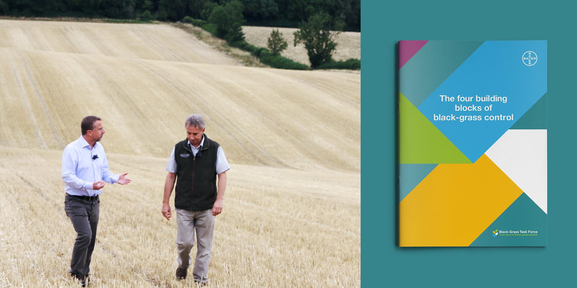 bayer cereals black-grass control