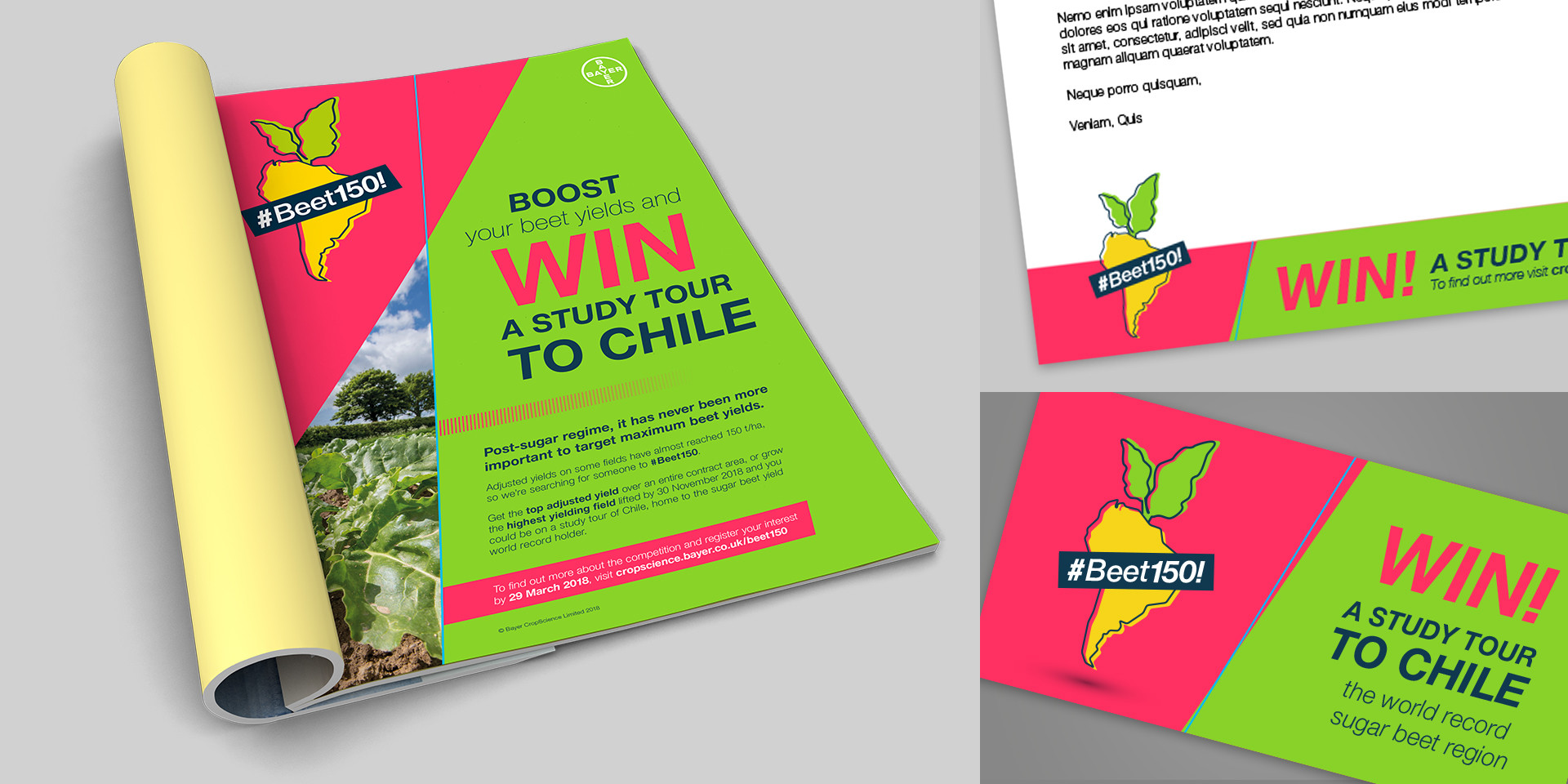 Beet150 study tour to chile